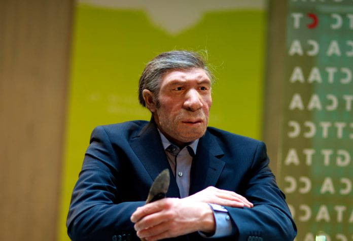 image_3629e-neanderthal-dna