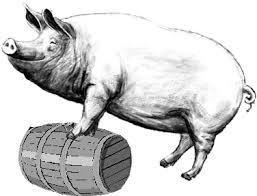 pork-barrel